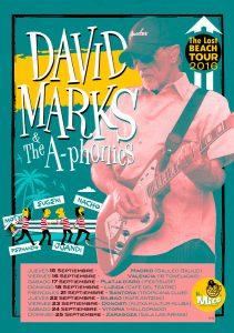 david-marks-the-beach-boys